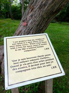 trees, companions