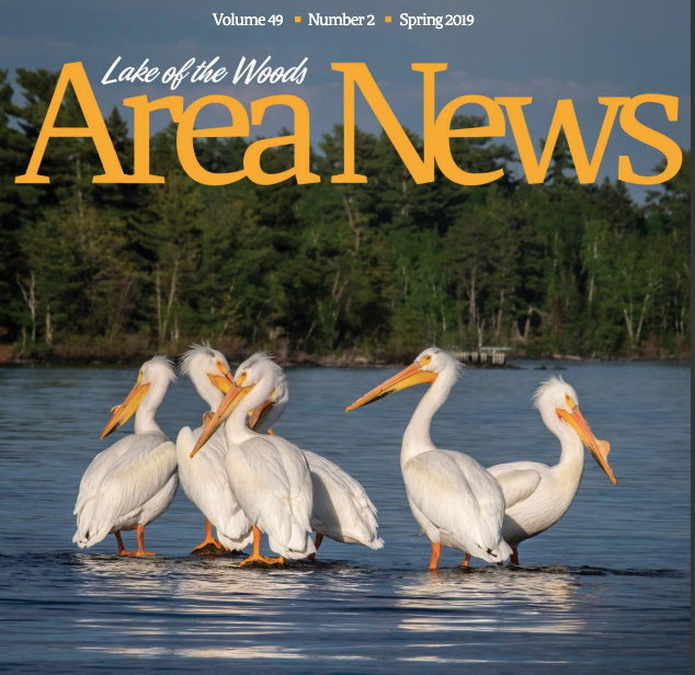 Lake of the Woods Area news, spring issue