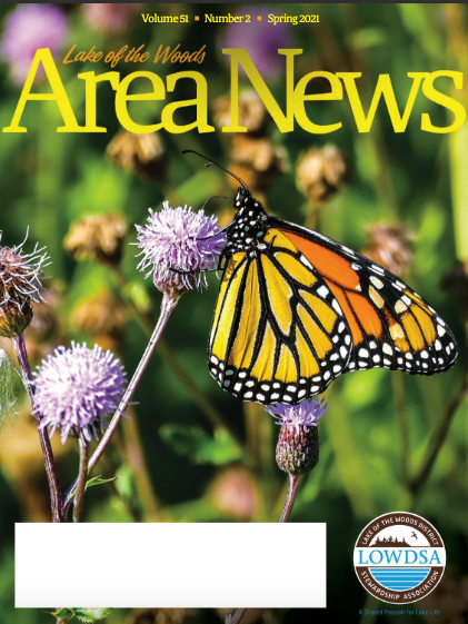 LOW Area News magazine cover with a butterfly